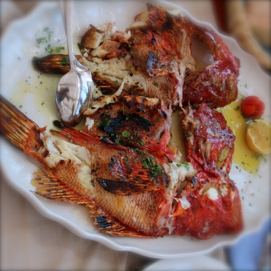 Traditional Croatian Food: Grilled Fish | Croatia Travel Blog