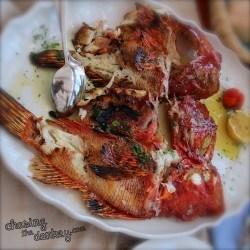 seafood fish fried konoba opat