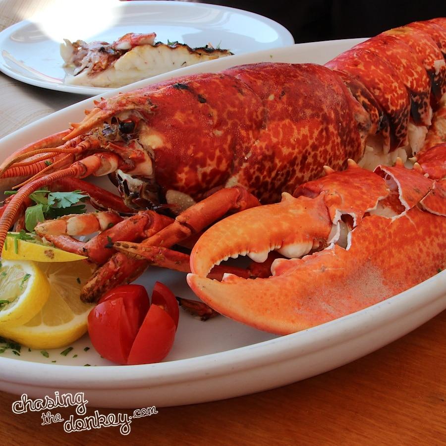 red lobster konoba opat seafood