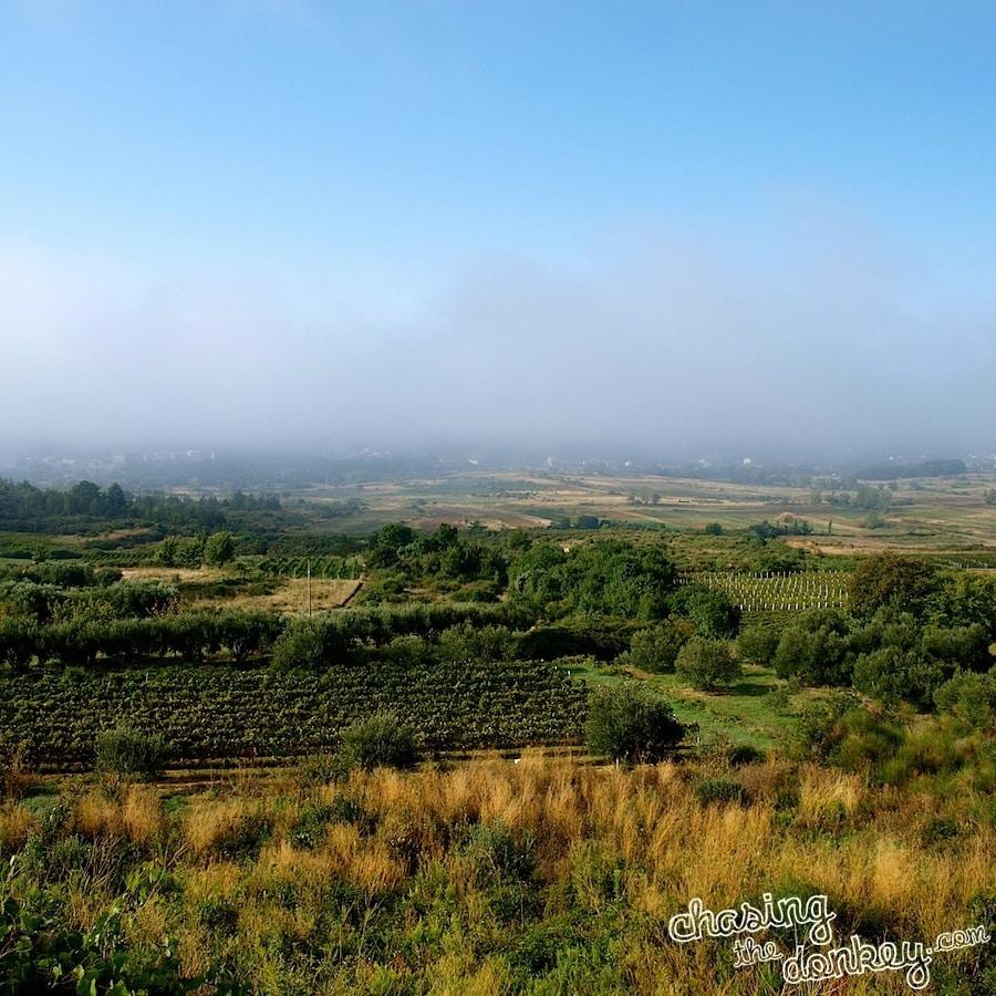 expat blog wine making in croatia