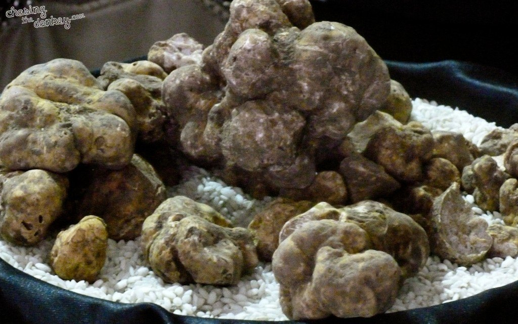 White Truffles in Istria