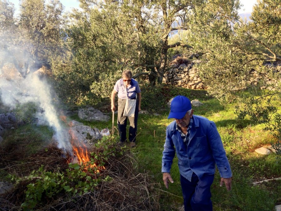 Nana and Dido kicking it old school: clearing up and burning the weeds under the olive trees.