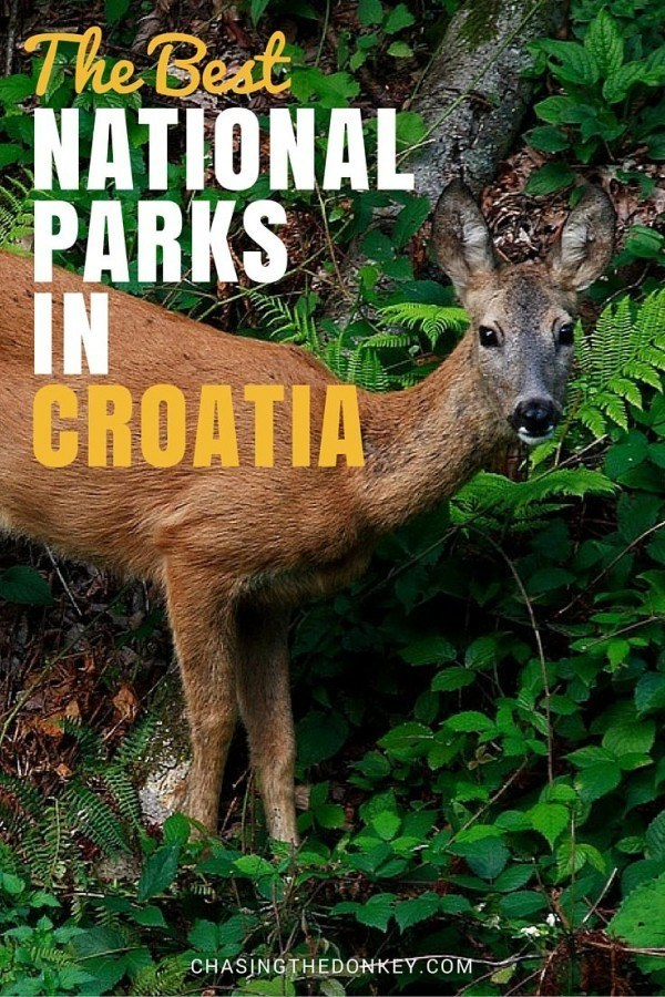 National Parks in Croatia | Chasing the Donkey Travel Blog
