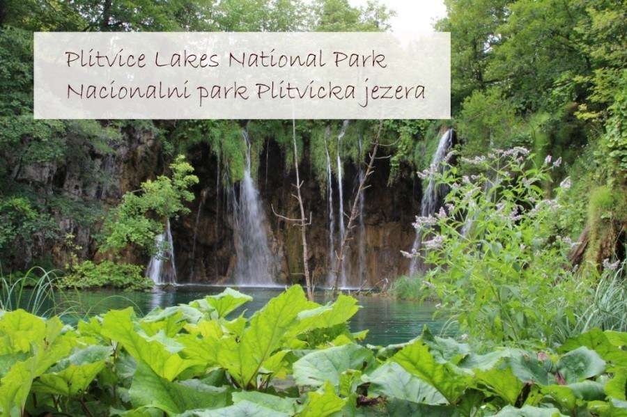 Travel Croatia like a local - Croatian UNESCO World Heritage Sites - Plitvice Lakes