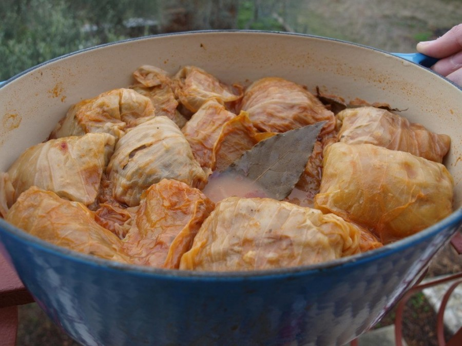 Finished Sarma ready to devour - just take one!