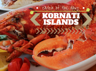 Kornati Islands: Dine at Konoba Opat