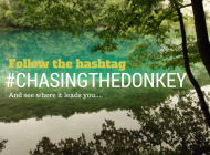 Croatia you've been tagged #chasingthedonkey all over!