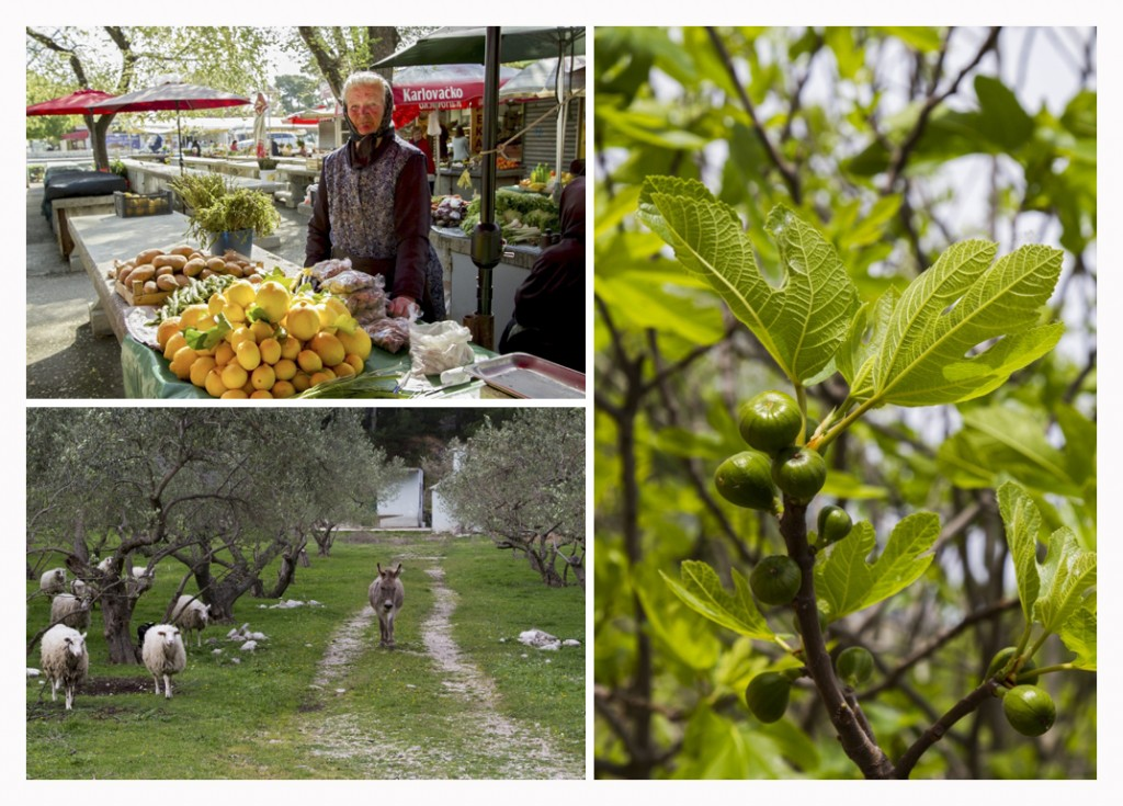 What to eat in Croatia fresh produce - Chasing the Donkey