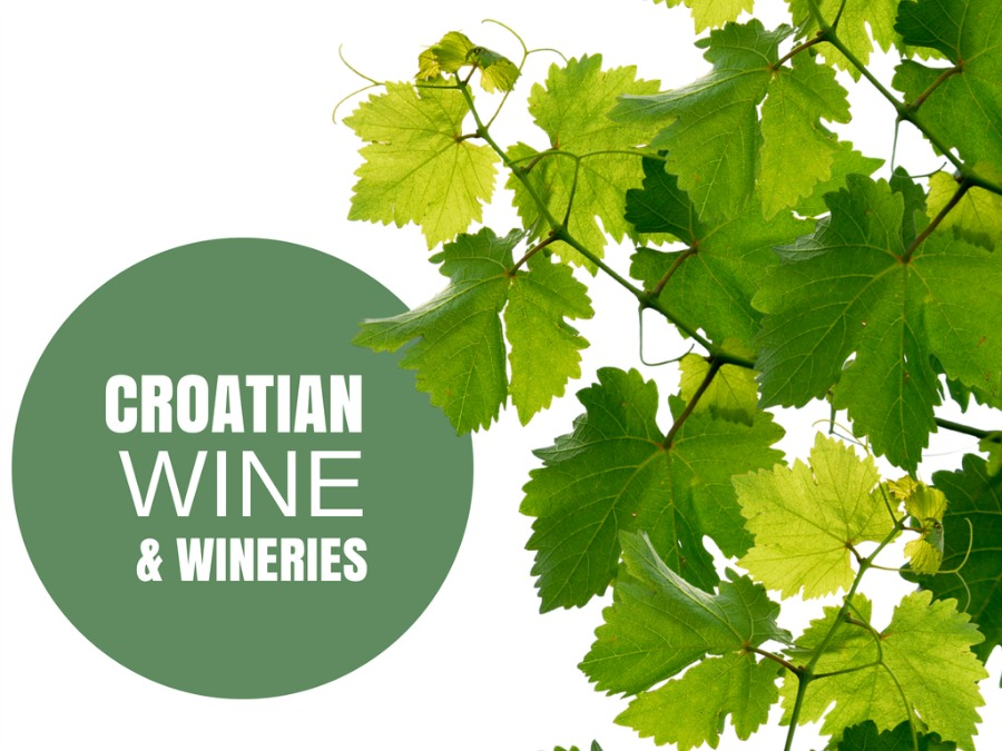 Wine Tasting in Croata - TRAVEL CROATIA LIKE A LOCAL