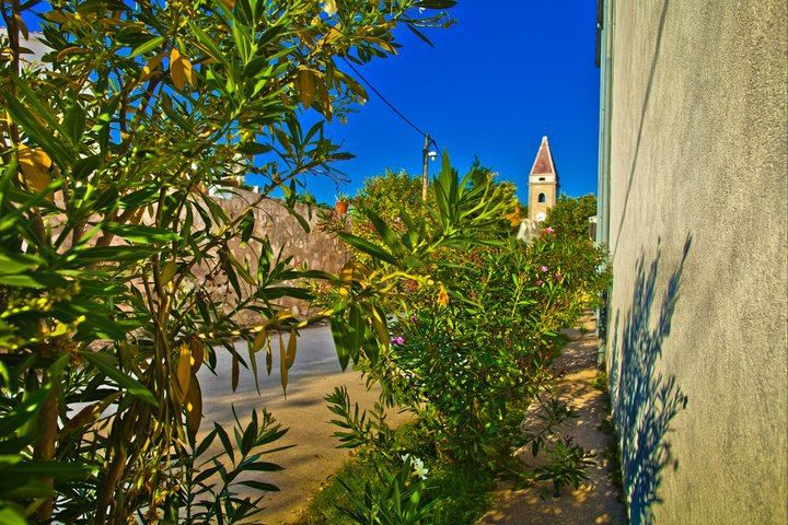 Travel to Croatia - Silba Island green