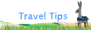 TRAVEL GUIDE TIPS  SIDE BAR