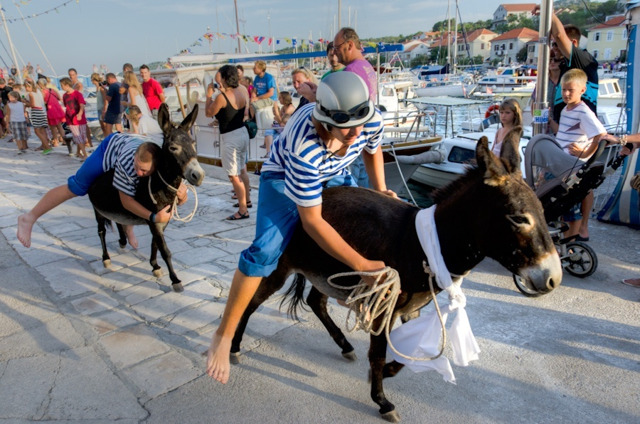 Donkey Race at Sali | Things to do in Croatia