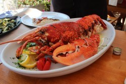 Lobster at Restaurant Opat, Kornati Islands