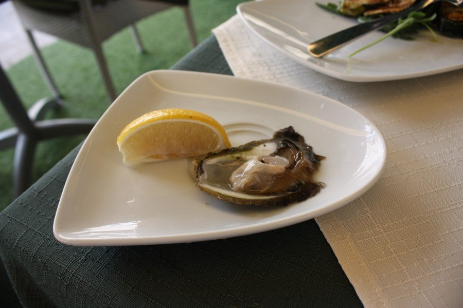 Adriatic's precious gems, the all-mighty Oyster