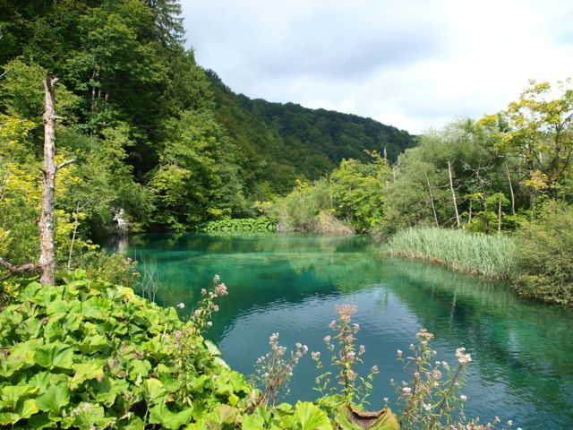 Plitvice Lakes National Park CtD - 1