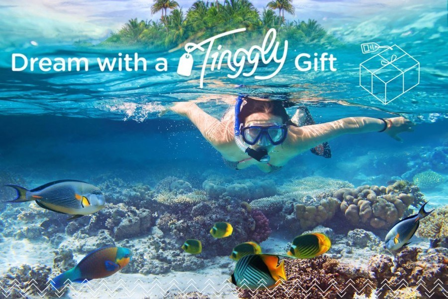 Tinggly Gift Voucher Banner