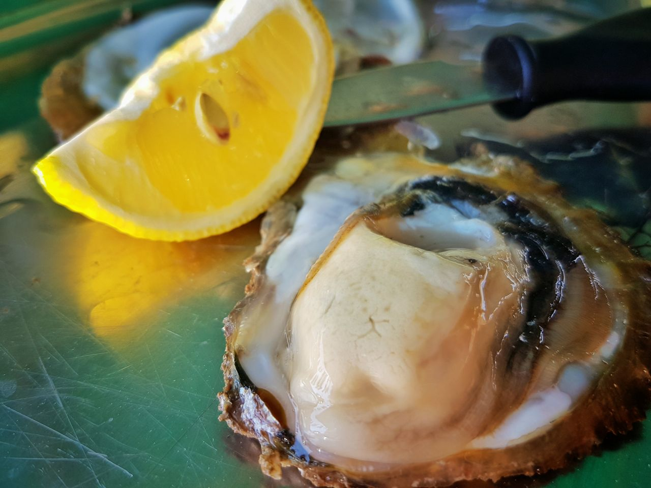 Where To Find Oysters In Croatia: Mali Ston & Lim Bay