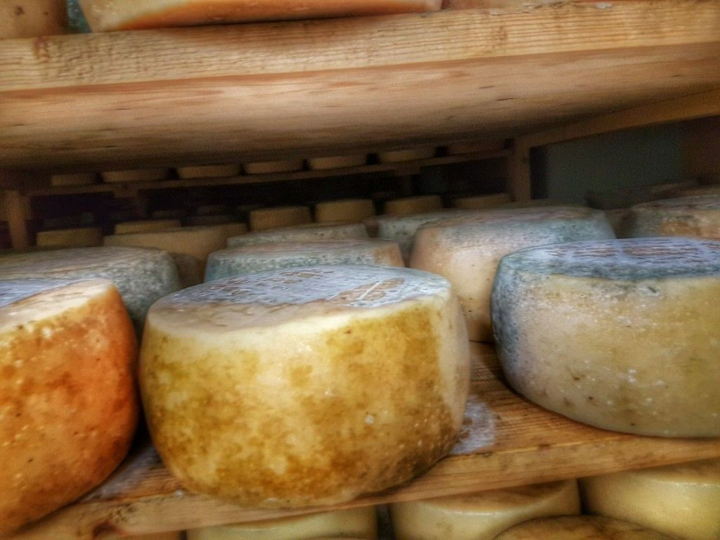 Istrian Food in Istria Croatia Travel Blog - 1