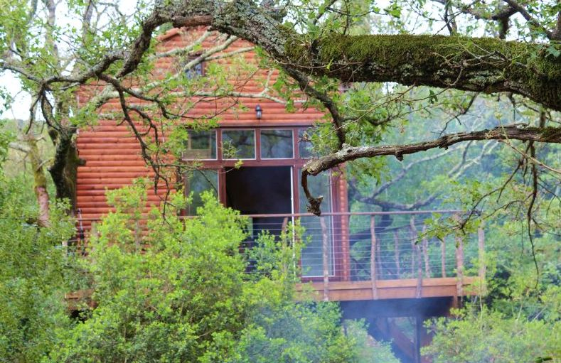 Weird Accommodation in Croatia Treehouse | Croatia Travel Blog