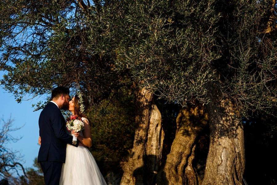 Olive Groves Destination Wedding, Pag | Croatia Travel Blog