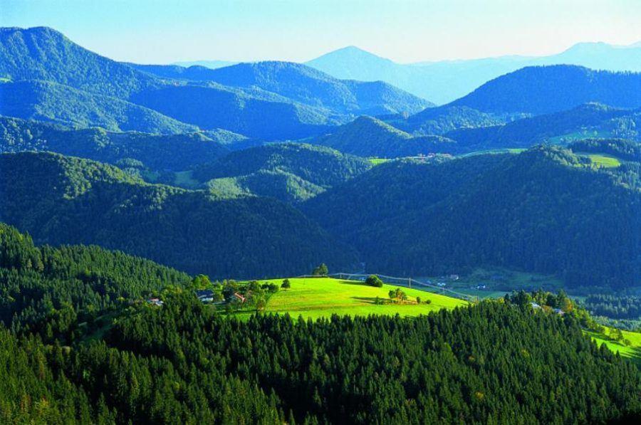 slovenj-gradec-slovenia-green | Slovenia Travel Blog