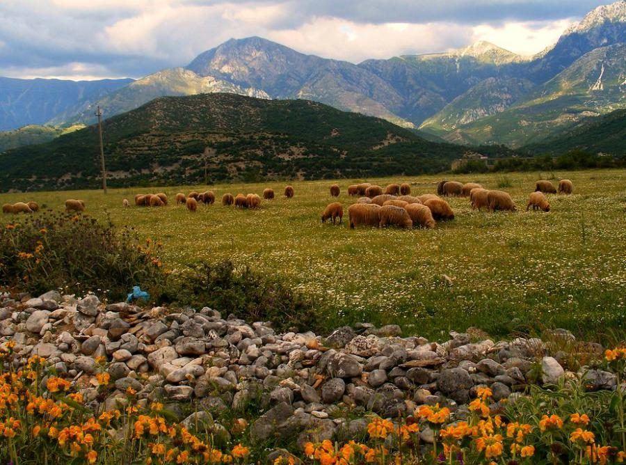 albania_albania-travel-blog