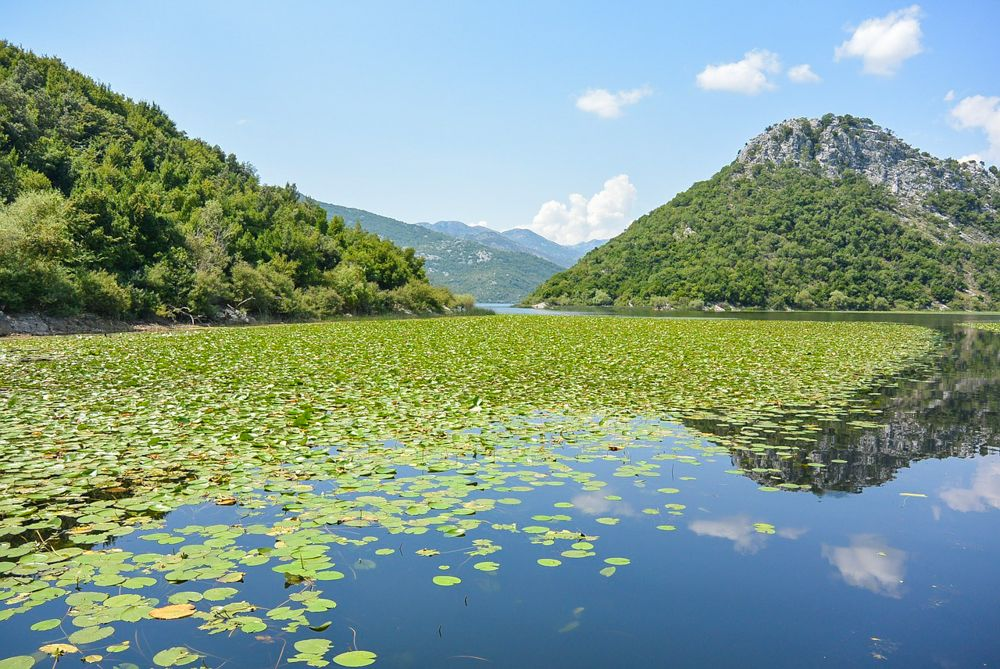 Lake Skadar Montenegro | Montenegro Travel Blogger