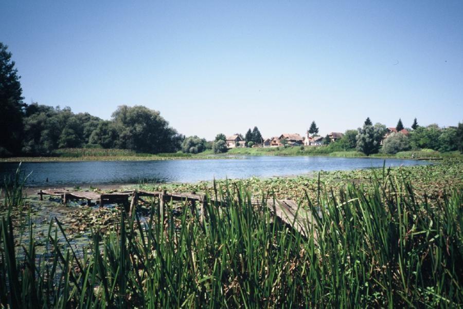 Croatia Travel Blog_Guide to Croatia's Naure Parks_Lonjsko Polje