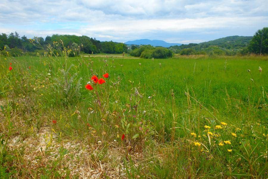 Croatia Travel Blog_Guide to Croatia's Naure Parks_Ucka
