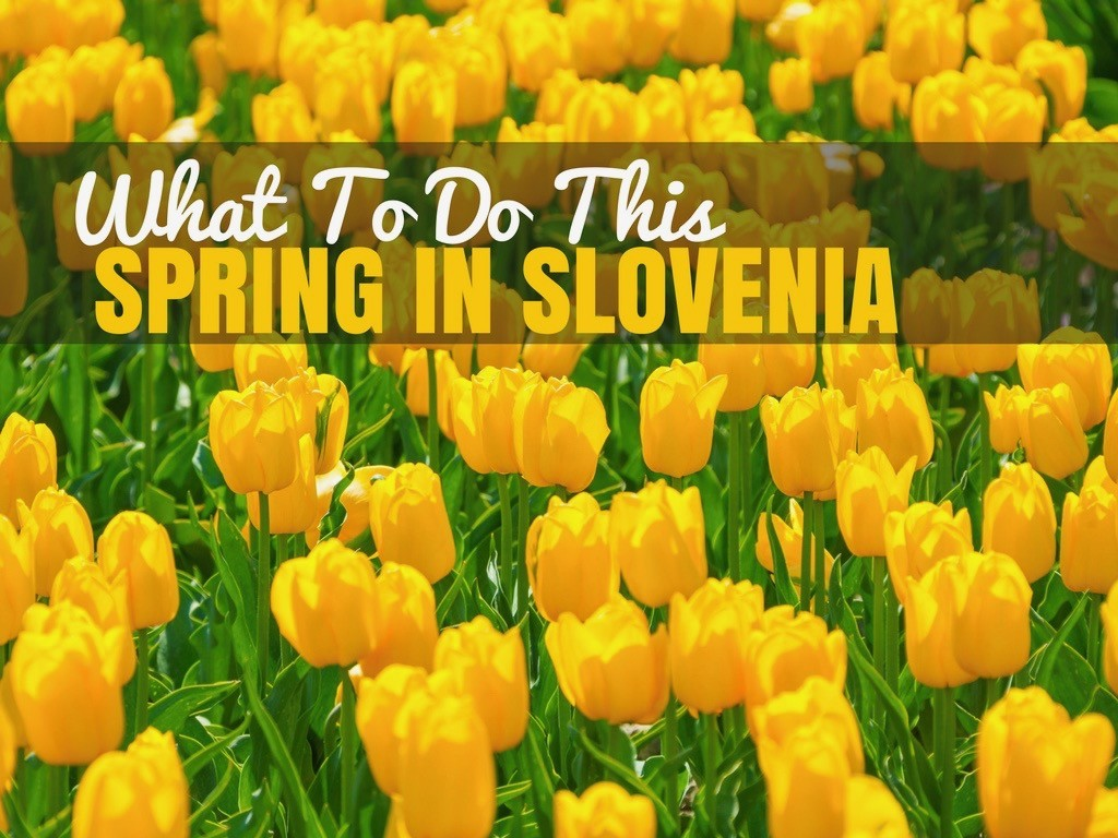 Spring Things to do In Slovenia Travel Blog COVER
