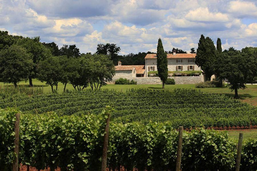 Things to do in Croatia_Unique Luxury Accomodation Meneghetti Wine Hotel_Croatia Travel Blog