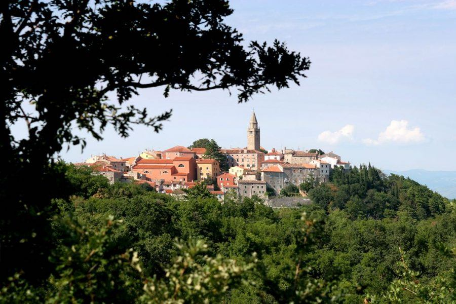 Things to do in Labin Croatia_Labin_old_city_Panorama