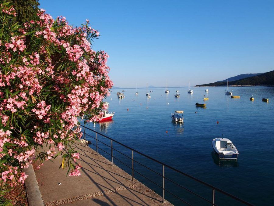 Things to do in Rabac: Wander the Promenade