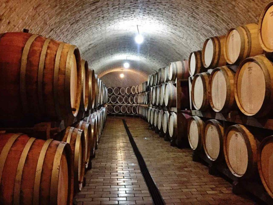 Best Croatian Wine - 5 Grapes_enjingi cellar slavonia and the Danube