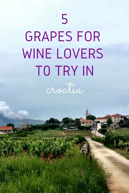 Croatia Travel Blog_Croatia's Best Wine Guide