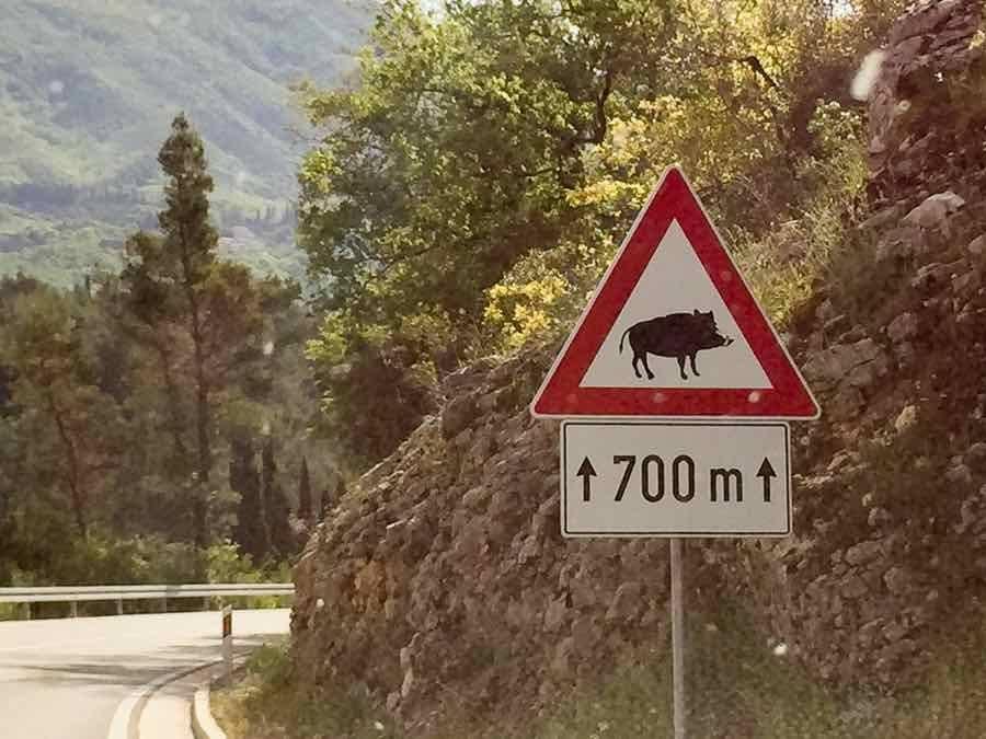 Day Trip to Montenegro 2