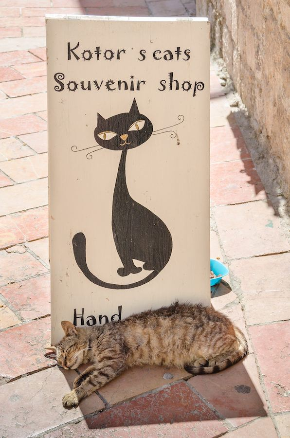 Montenegro Souvenirs_What to Buy in Montenegro _ Cat Souvenirs