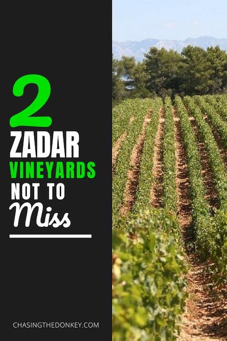 Croatia Travel Blog_Things to do in Croatia_Top Wineries in Zadar