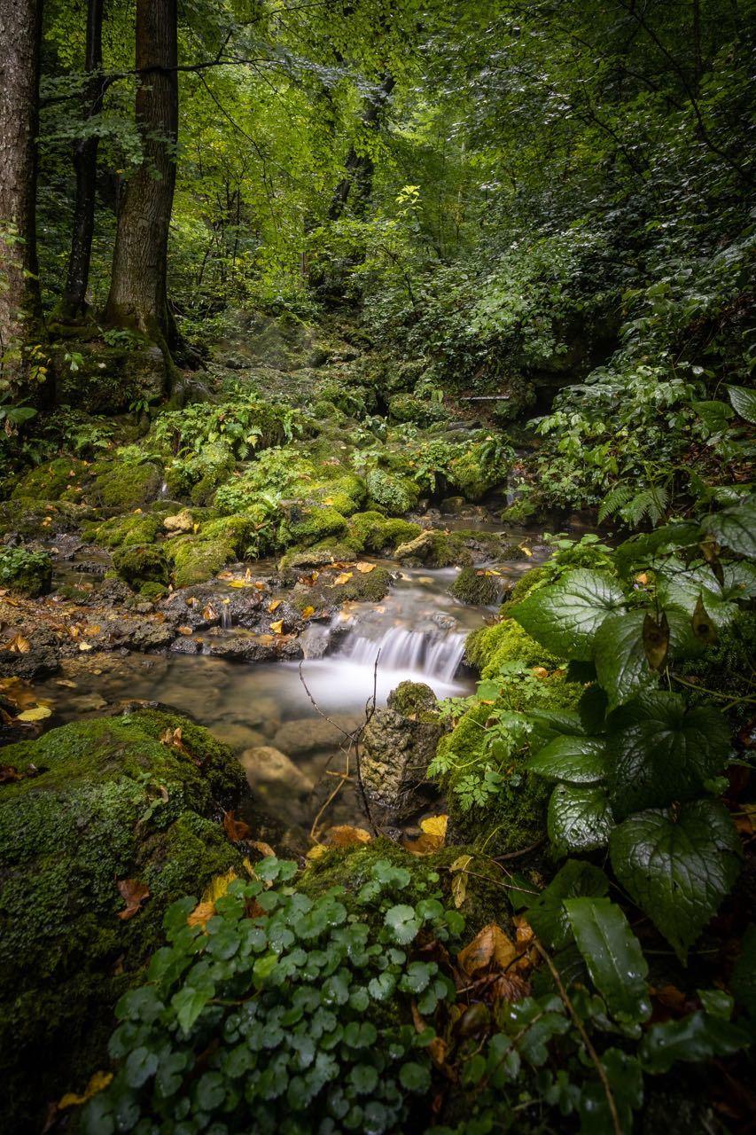 Papuk Nature Park Fall