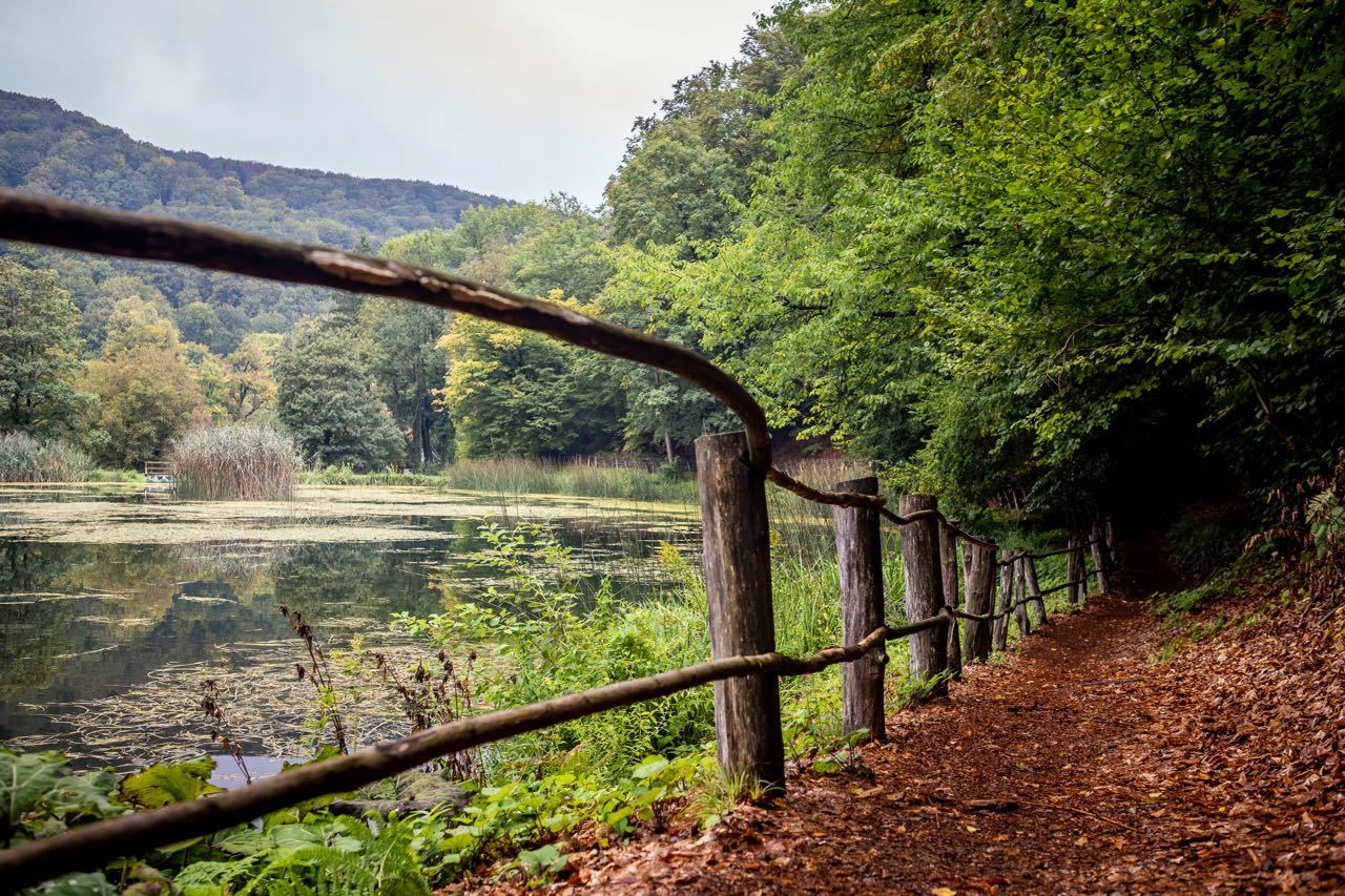 Papuk Nature Park_julien