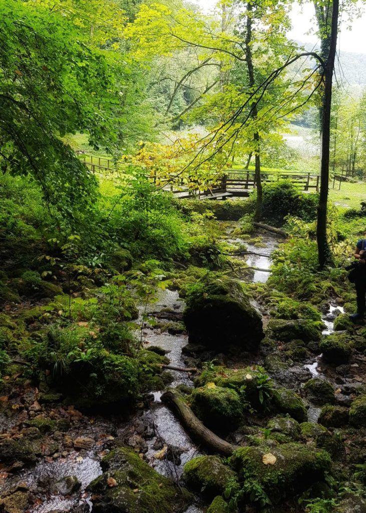 Papuk Nature Park Slavonia - UNESCO Geopark 9