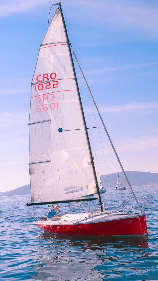 Zadarska Koka - Red
