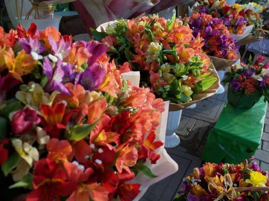Top Things To Do In Chișinău, Moldova_Flower market
