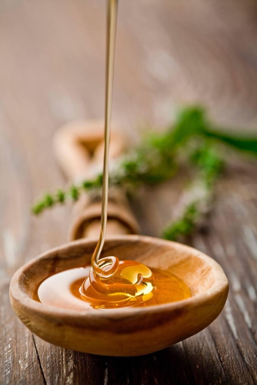 Wild Honey - Serbia Travel Blog