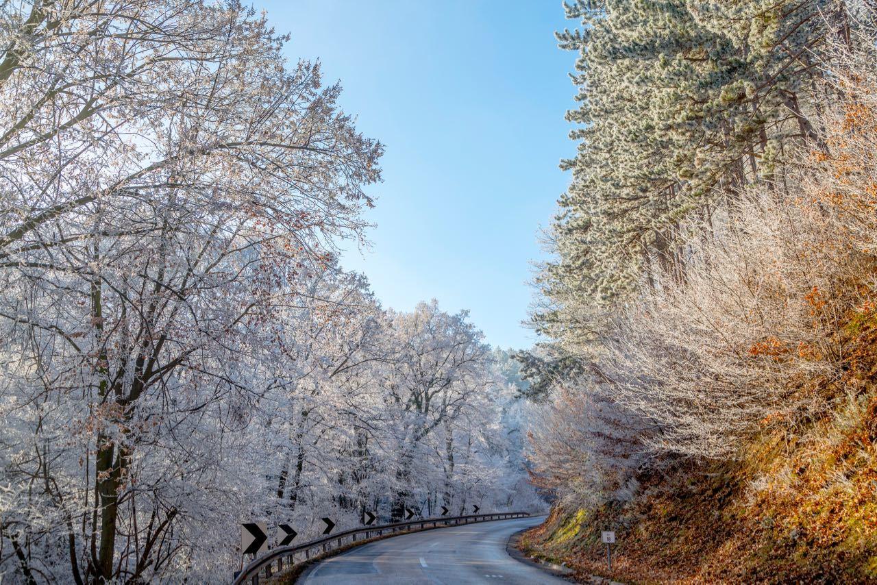 National Parks In Serbia_Frozen Forest at Fruska Gora Mountain near Novi Sad