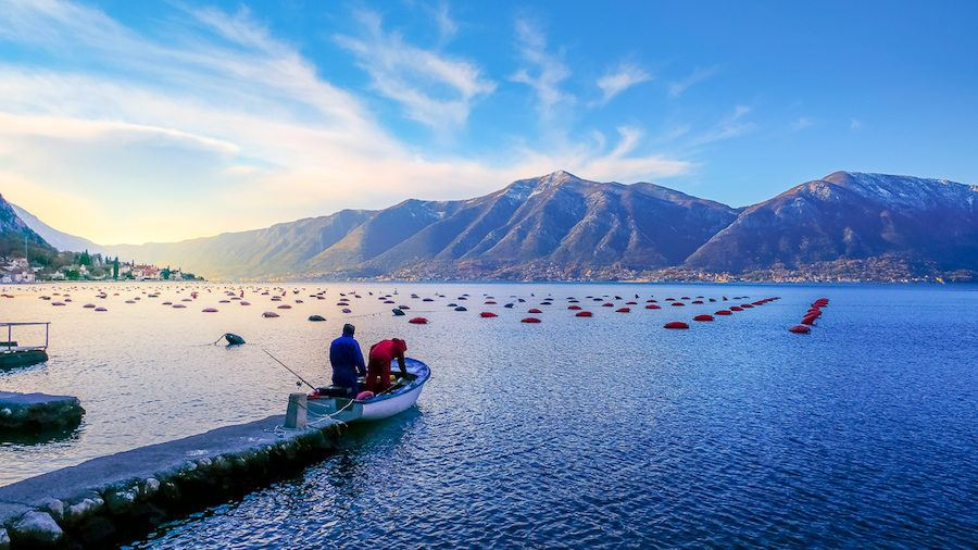 Winter In Montenegro - Locals Fishing