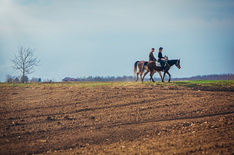Beat The Crowds In Slavonia_HORSE RIDING