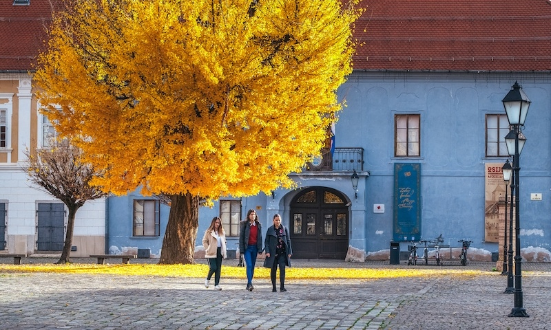Beat The Crowds In Slavonia_Museum of Slavonia in Osijek