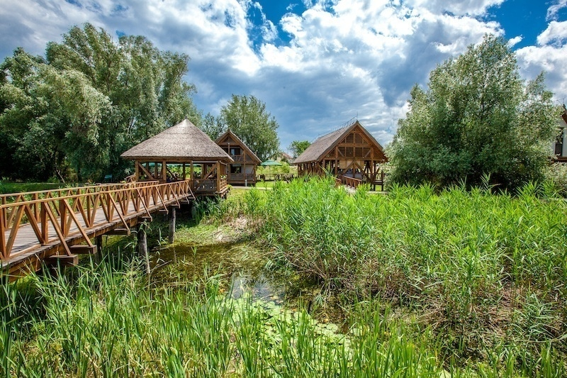 Beat-The-Crowds-In-Slavonia_Nature-Park-Kopački-Rit-2