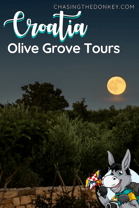 Croatia Travel Blog_Istria Olive Grove Tours With Brist_Social Distance Travel Ideas